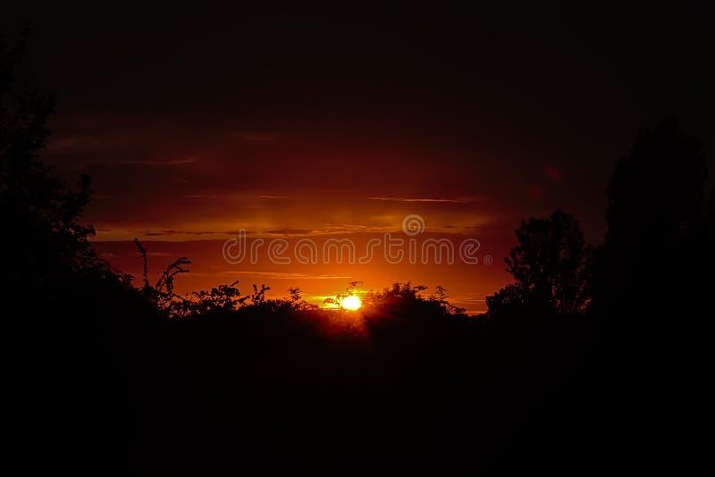 Θερμό πορτοκαλί ηλιοβασίλεμα επάνω από τις σκιαγραφίες των δέντρων και των θάμνων στοκ εικόνες