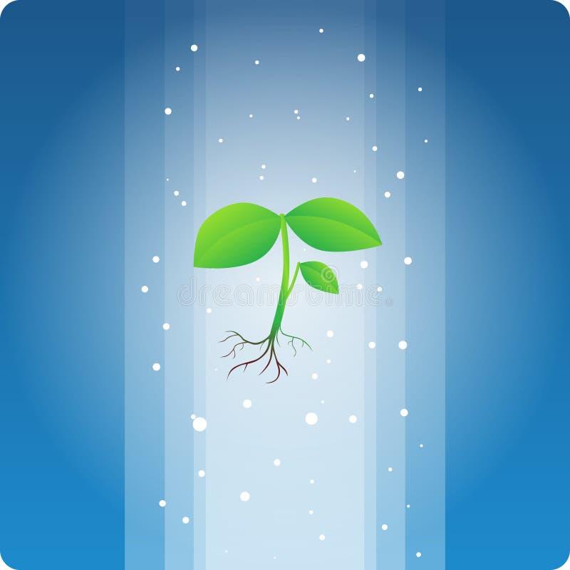 Θεϊκό φυτό διανυσματική απεικόνιση