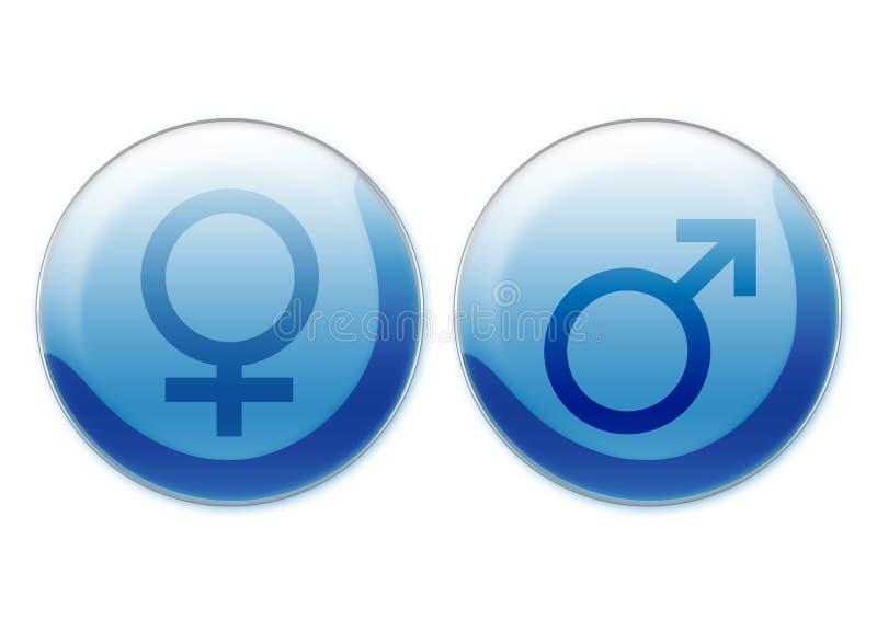 θηλυκά αρσενικά σύμβολα ελεύθερη απεικόνιση δικαιώματος