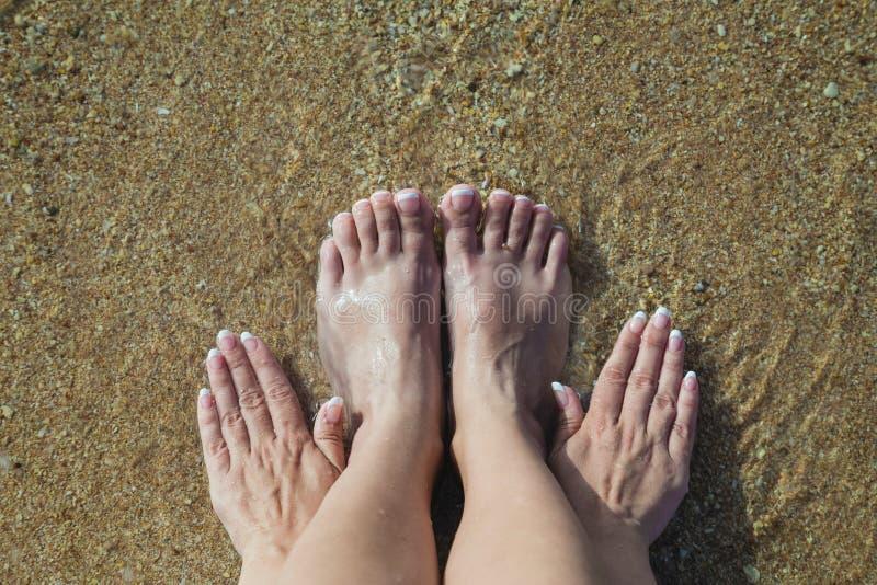 Θηλυκά πόδια και χέρια με το φρέσκο γαλλικό ρόδινο και άσπρο pedicure στοκ εικόνες