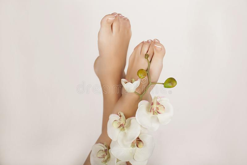 Θηλυκά πόδια στη διαδικασία pedicure SPA στοκ εικόνες