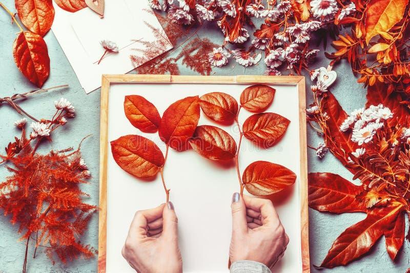 Θηλυκά χέρια που κρατούν τους κλαδίσκους με τα φύλλα φθινοπώρου στο επιτραπέζιο υπόβαθρο ανθοκόμων Παραγωγή ρύθμισης λουλουδιών π στοκ φωτογραφία με δικαίωμα ελεύθερης χρήσης