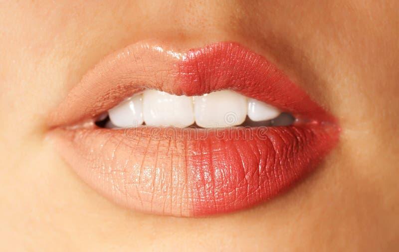 Θηλυκά χείλια στοκ εικόνες