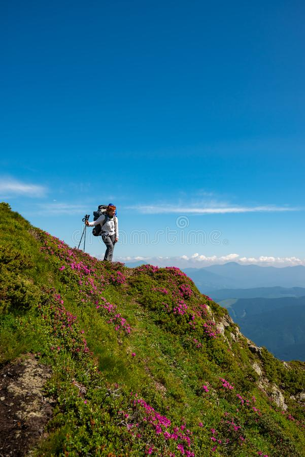 Θηλυκή χαλάρωση τυχοδιωκτών στην πράσινη κορυφογραμμή βουνών στοκ εικόνες