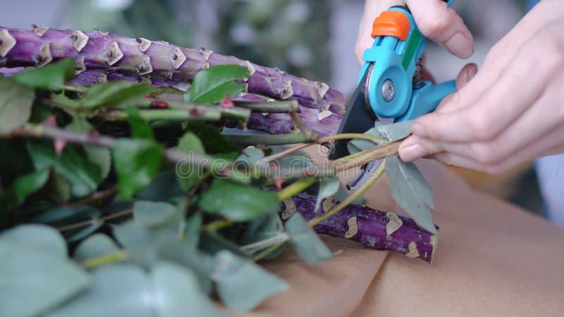 Θηλυκός ανθοκόμος που κόβει τους υπερβολικούς κλάδους της ανθοδέσμης στοκ φωτογραφία