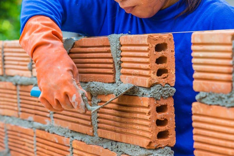 Θηλυκός εργάτης οικοδομών που καθορίζει το τουβλότοιχο στοκ εικόνες