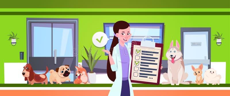 Θηλυκός κτηνίατρος πέρα από τα σκυλιά που κάθεται στη αίθουσα αναμονής στο γραφείο κλινικών κτηνιάτρων διανυσματική απεικόνιση