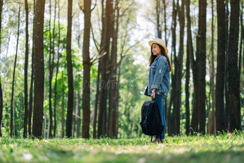 Θηλυκός ταξιδιώτης με ένα καπέλο και ένα σακίδιο πλάτης που εξετάζουν ξύλα τα όμορφα πεύκων στοκ φωτογραφίες