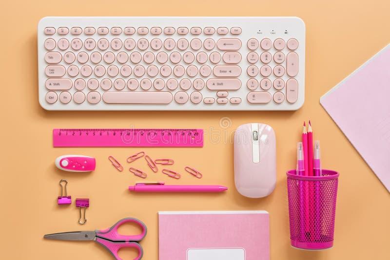 Θηλυκός χώρος εργασίας με έναν υπολογιστή και χαρτικά για να οδοντώσει το χρώμα σε ένα υπόβαθρο κρητιδογραφιών Επίπεδος βάλτε το  στοκ εικόνα