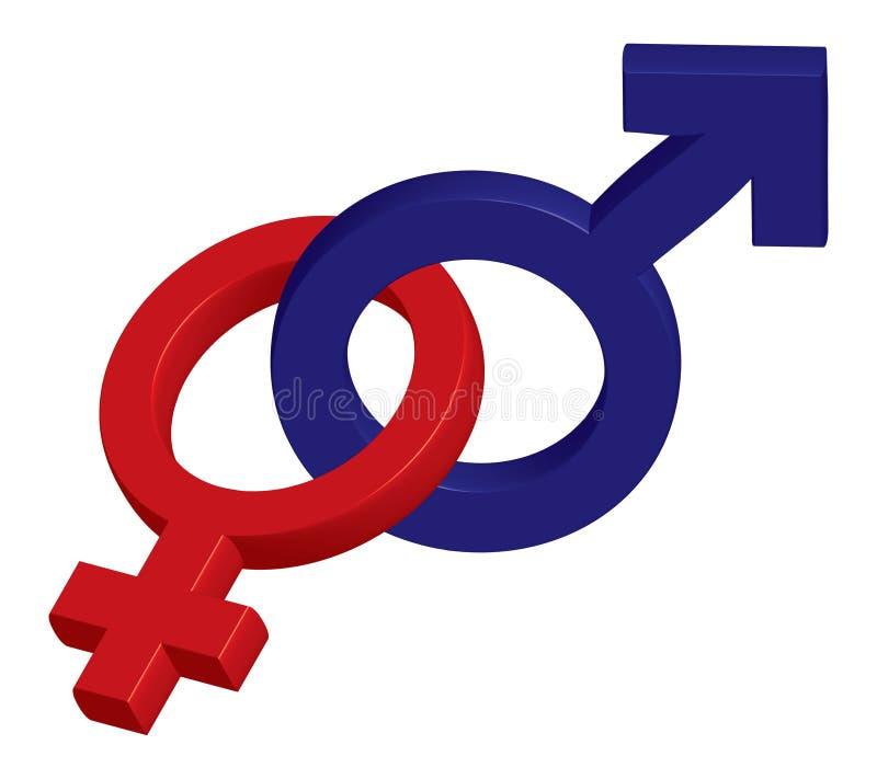 θηλυκό αρσενικό απεικόνιση αποθεμάτων