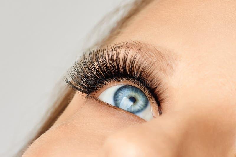 Θηλυκό μάτι με τα ακραία μακροχρόνια ψεύτικα eyelashes Επεκτάσεις Eyelash, σύνθεση, καλλυντικά, ομορφιά στοκ εικόνα με δικαίωμα ελεύθερης χρήσης
