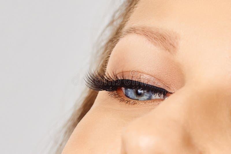 Θηλυκό μάτι με τα ακραία μακροχρόνια ψεύτικα eyelashes Επεκτάσεις Eyelash, σύνθεση, καλλυντικά, ομορφιά στοκ εικόνες