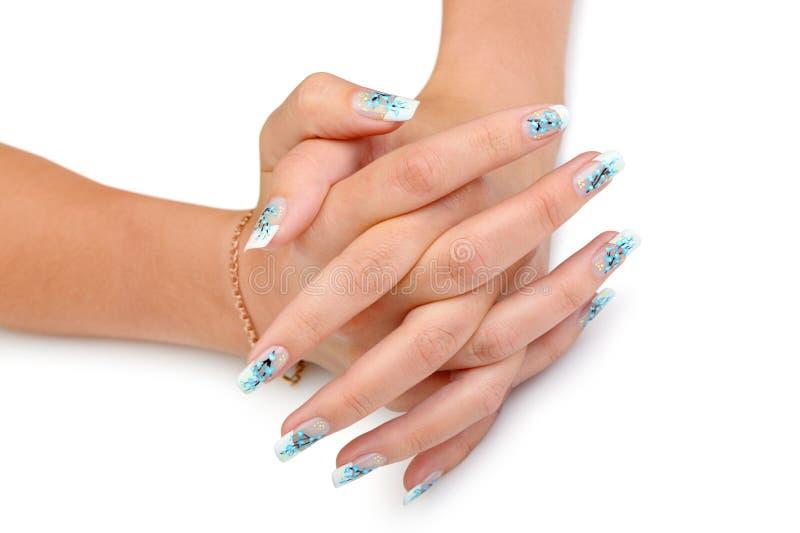 θηλυκό μανικιούρ χεριών στοκ εικόνα