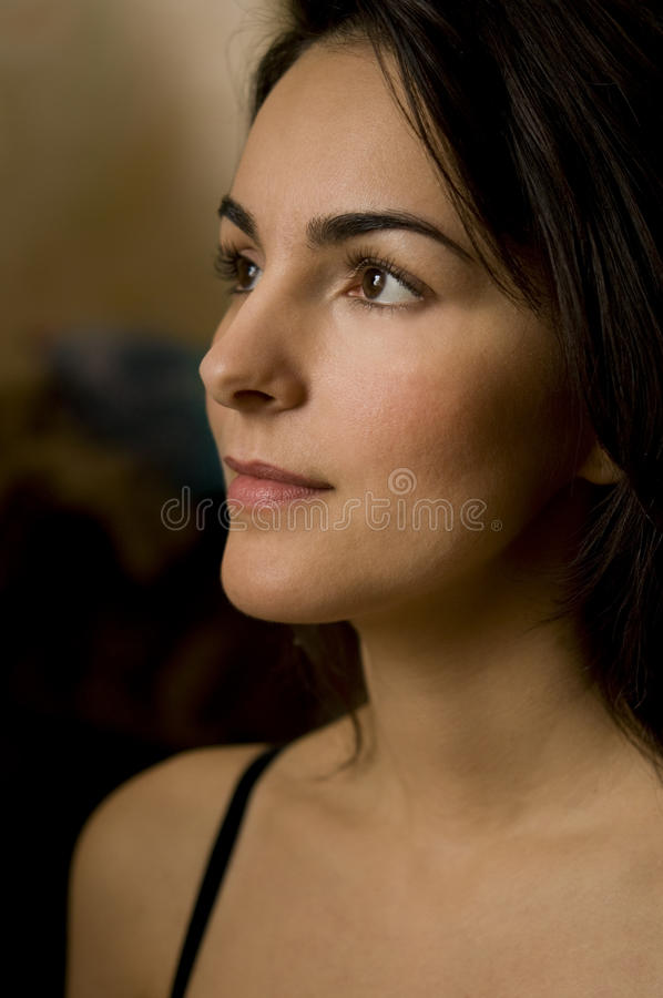 θηλυκό ομορφιάς στοκ εικόνες