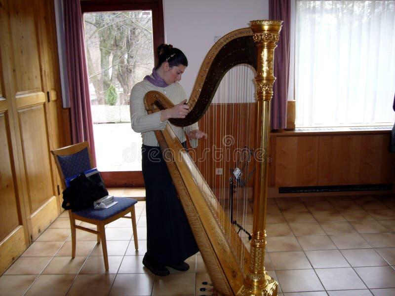 θηλυκό παιχνίδι μουσικών αρπών Σημείωση, μουσική στοκ εικόνες