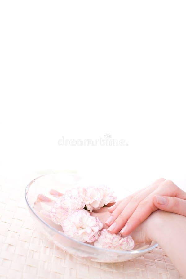 θηλυκό πλήρες ύδωρ χεριών &kap στοκ φωτογραφίες με δικαίωμα ελεύθερης χρήσης