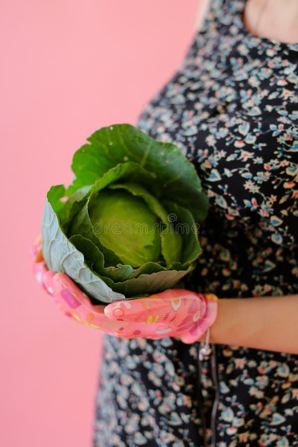 Θηλυκό πρόσωπο κινηματογραφήσεων σε πρώτο πλάνο που κρατά το λάχανο στο ρόδινο μονοφωνικό υπόβαθρο στοκ εικόνα