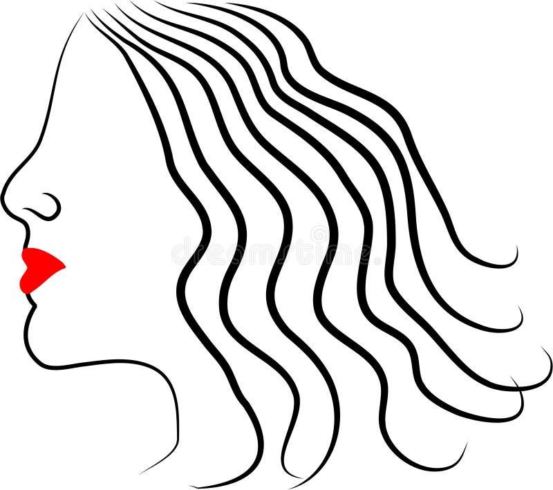 θηλυκό σχεδιάγραμμα Στοκ Εικόνες