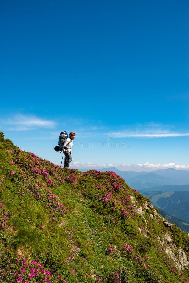 Θηλυκό τυχοδιωκτών στην πράσινη κορυφογραμμή βουνών στοκ φωτογραφίες