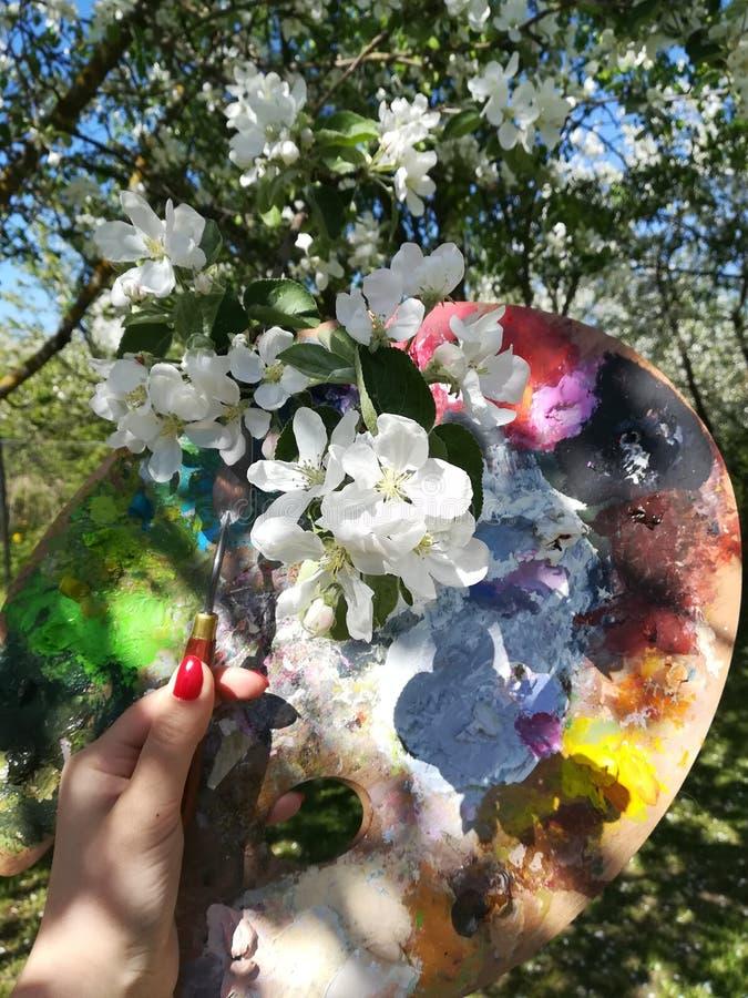Θηλυκό χέρι με ένα μαχαίρι παλετών και μια παλέτα για τα χρώματα στα πλαίσια των ανθίζοντας δέντρων μηλιάς στοκ φωτογραφίες