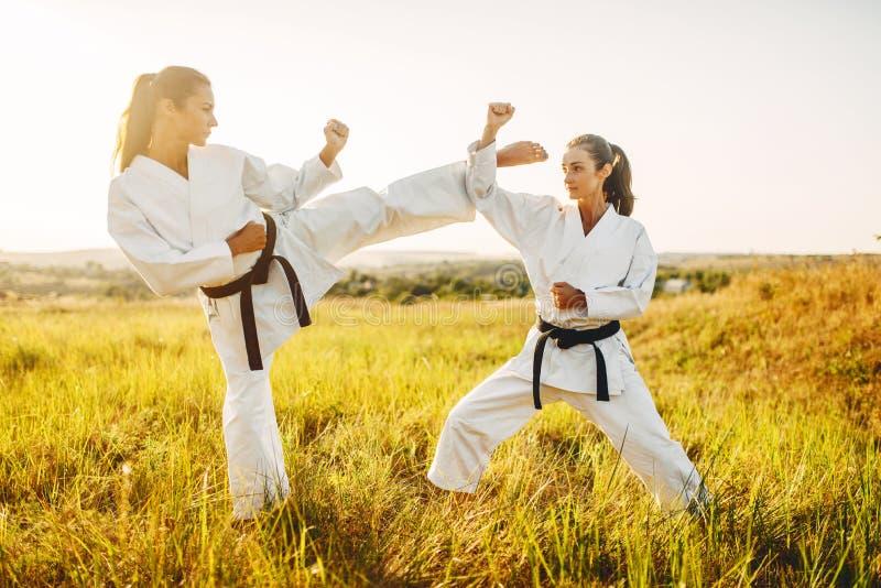 Θηλυκό karate δύο με τη μαύρη πάλη ζωνών στον τομέα στοκ φωτογραφία με δικαίωμα ελεύθερης χρήσης