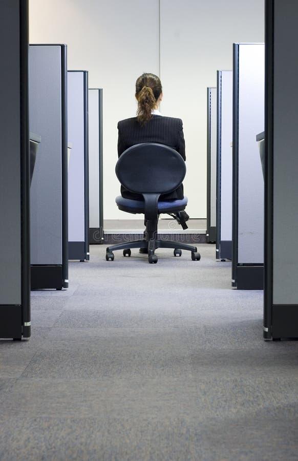θηλυκό ofice ανώτατων στελεχών επιχείρησης στοκ εικόνα με δικαίωμα ελεύθερης χρήσης