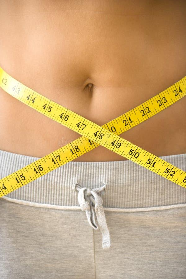θηλυκό waistline στοκ εικόνα με δικαίωμα ελεύθερης χρήσης