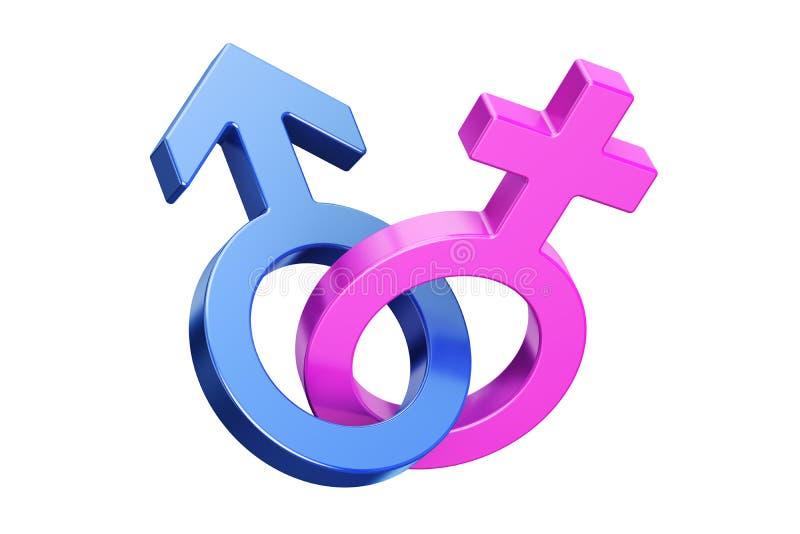 Θηλυκά και αρσενικά σύμβολα γένους, τρισδιάστατη απόδοση ελεύθερη απεικόνιση δικαιώματος