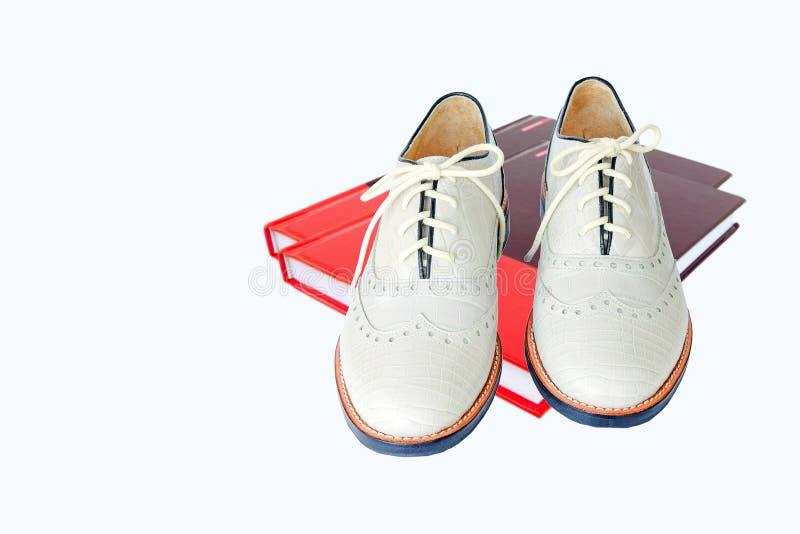 Θηλυκή μόδα με το παπούτσι στο κόκκινο βιβλίο που απομονώνεται στο άσπρο backgroun στοκ εικόνα