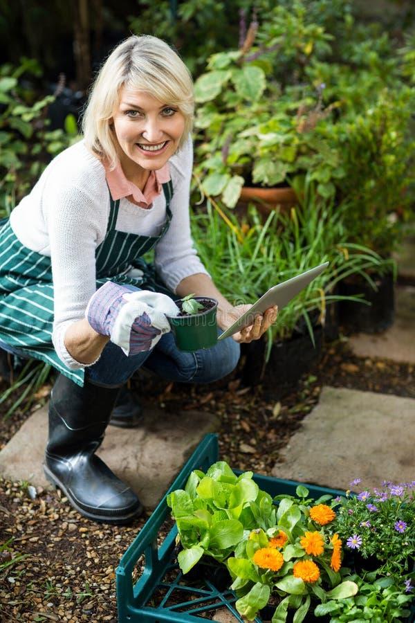 Θηλυκός κηπουρός που κρατά τις σε δοχείο εγκαταστάσεις χρησιμοποιώντας την ψηφιακή ταμπλέτα στοκ φωτογραφίες με δικαίωμα ελεύθερης χρήσης