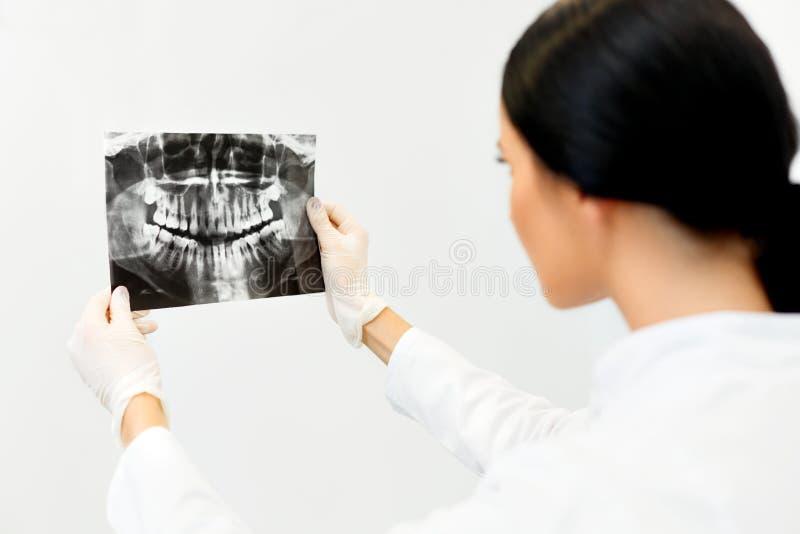 Θηλυκός οδοντίατρος που εξετάζει την οδοντική ακτίνα X στην κλινική στοκ φωτογραφία με δικαίωμα ελεύθερης χρήσης