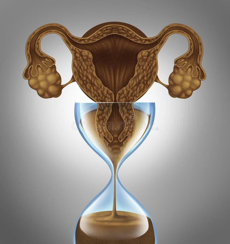 Θηλυκό βιολογικό ρολόι διανυσματική απεικόνιση