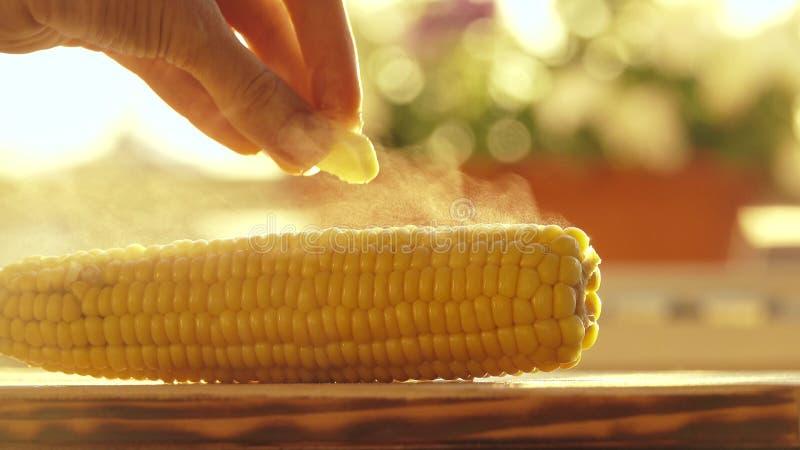 Θηλυκό χέρι που τοποθετεί ένα κομμάτι του βουτύρου στο καυτό πρόσφατα βρασμένο καλαμπόκι στοκ φωτογραφία με δικαίωμα ελεύθερης χρήσης