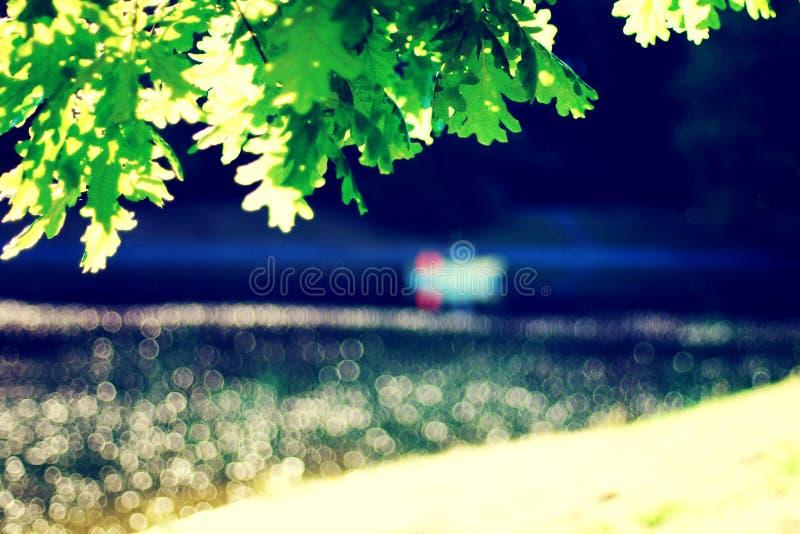 Θολωμένη λίμνη πάρκων με τη βάρκα, specks του ελαφριού, πράσινου δρύινου φυλλώματος στοκ φωτογραφίες με δικαίωμα ελεύθερης χρήσης
