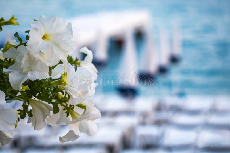 Θολωμένη Μεσόγειος με τις ομπρέλες και τις καρέκλες παραλιών στη Νίκαια Γαλλία στοκ φωτογραφία με δικαίωμα ελεύθερης χρήσης