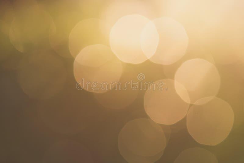 Θολωμένο πράσινο υπόβαθρο φύσης με το φυσικό φως με το διάστημα αντιγράφων στοκ εικόνες με δικαίωμα ελεύθερης χρήσης