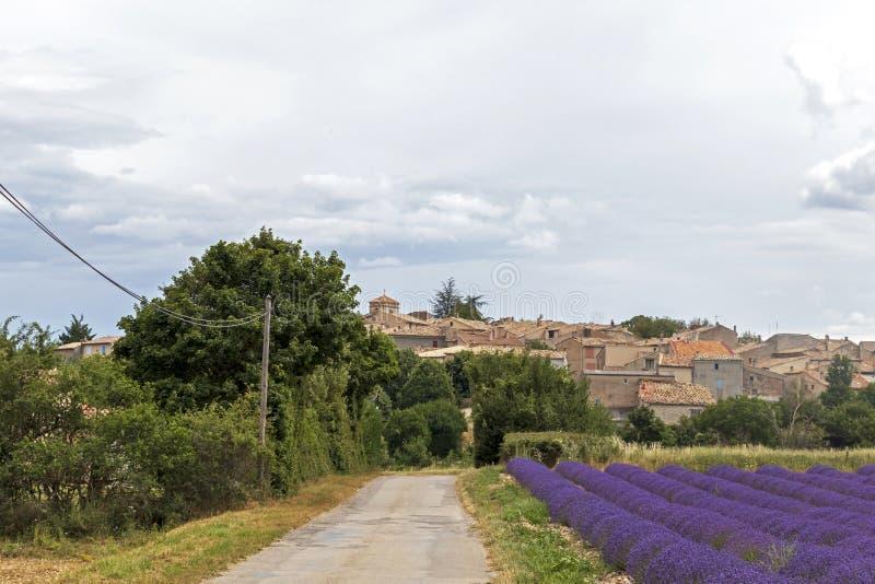 Θολωμένο υπόβαθρο με το μικρό βρώμικο δρόμο επαρχίας κατά μήκος του πορφυρού lavender τομέα στο χωριό της Προβηγκίας, Γαλλία στοκ εικόνες με δικαίωμα ελεύθερης χρήσης
