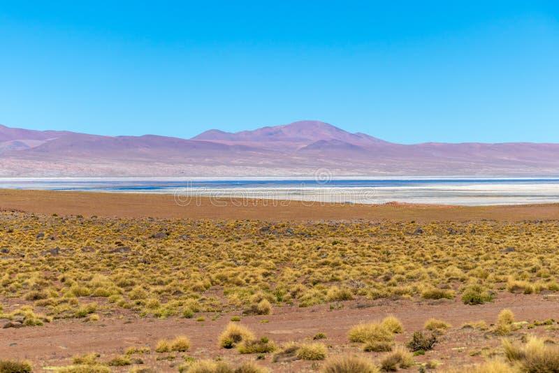 Θολωμένο υπόβαθρο με το τοπίο βολιβιανού Altiplano στοκ φωτογραφίες