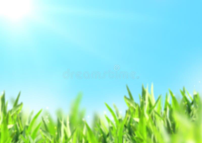 Θολωμένο φύση υπόβαθρο με την πράσινη χλόη και τον ηλιόλουστο μπλε ουρανό στοκ φωτογραφία με δικαίωμα ελεύθερης χρήσης