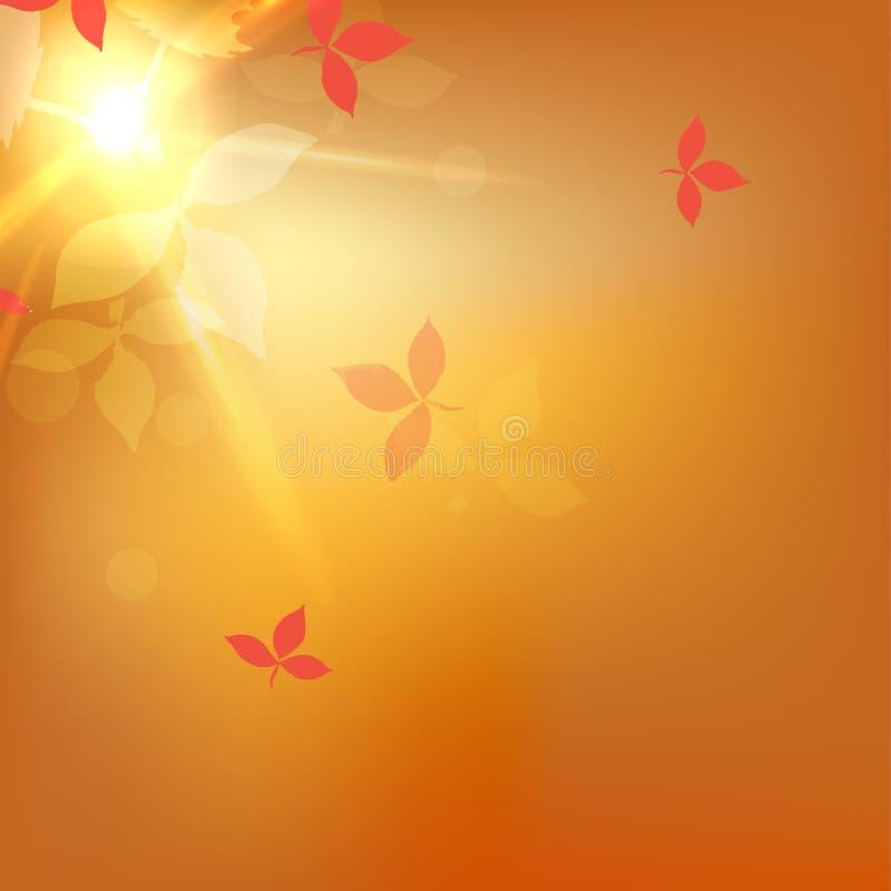 Θολωμένο διάνυσμα πορτοκαλί αφηρημένο υπόβαθρο φθινοπώρου με την επίδραση bokeh, κόκκινα φύλλα απεικόνιση αποθεμάτων