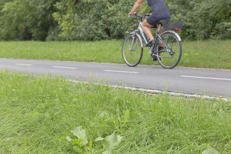 Θολωμένο οδηγώντας ποδήλατο γυναικών σε μια πορεία πάρκων στοκ φωτογραφία με δικαίωμα ελεύθερης χρήσης