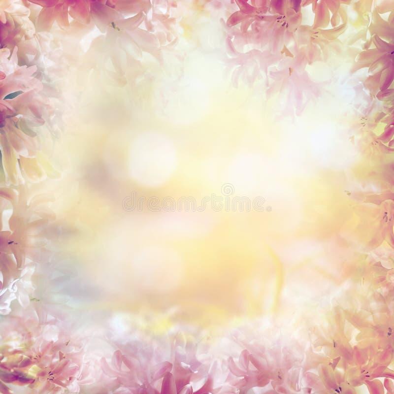 Θολωμένο υπόβαθρο φύσης κρητιδογραφιών φως με την ηλιοφάνεια και bokeh στοκ εικόνα