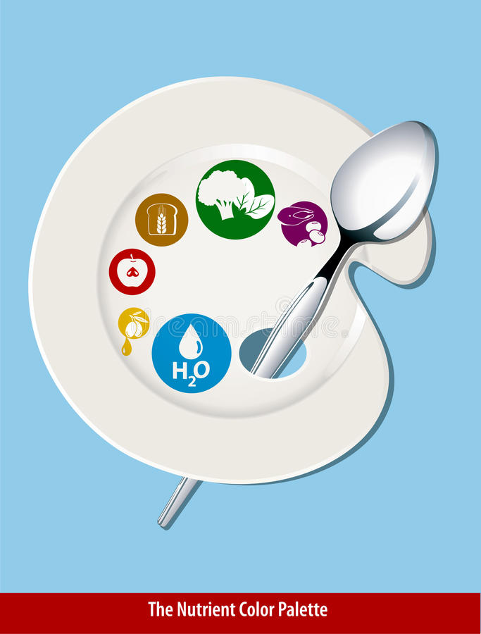 Θρεπτικό πιάτο χρώματος διανυσματική απεικόνιση