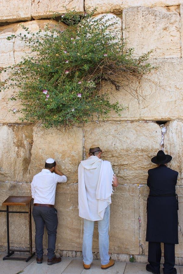 Θρησκευτικοί Εβραίοι, που προσεύχονται στον τοίχο Wailing στην Ιερουσαλήμ στοκ φωτογραφίες με δικαίωμα ελεύθερης χρήσης