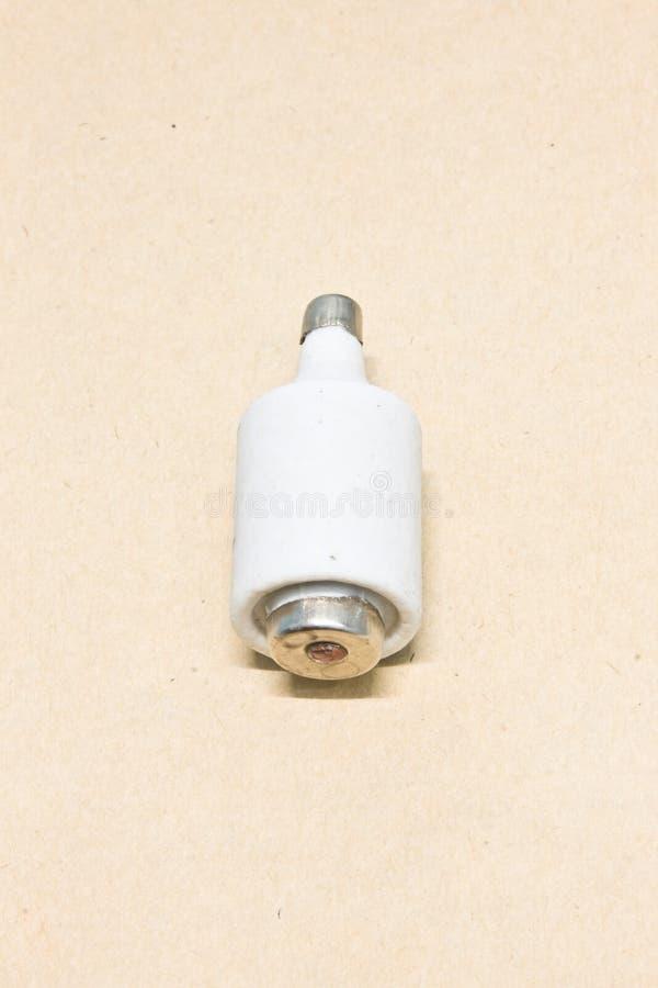 Θρυαλλίδα στοκ φωτογραφία με δικαίωμα ελεύθερης χρήσης
