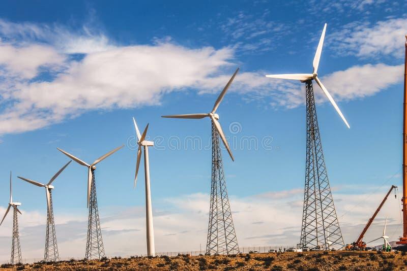 Θυελλώδεις ενεργειακές στάσεις ακόμα στην έρημο φοινικών στοκ εικόνες