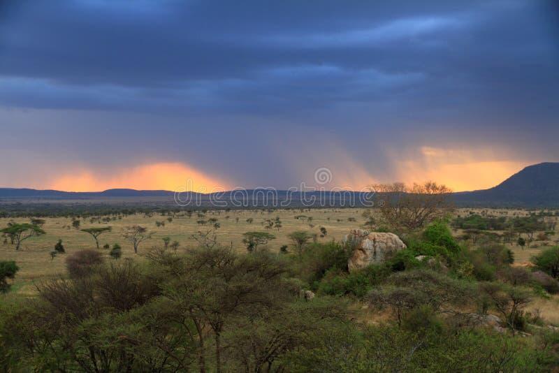 Θυελλώδες ηλιοβασίλεμα πέρα από την αφρικανική σαβάνα στοκ εικόνες με δικαίωμα ελεύθερης χρήσης