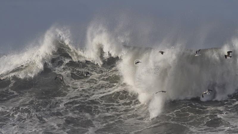 Θυελλώδες σπάζοντας κύμα θάλασσας στοκ φωτογραφίες