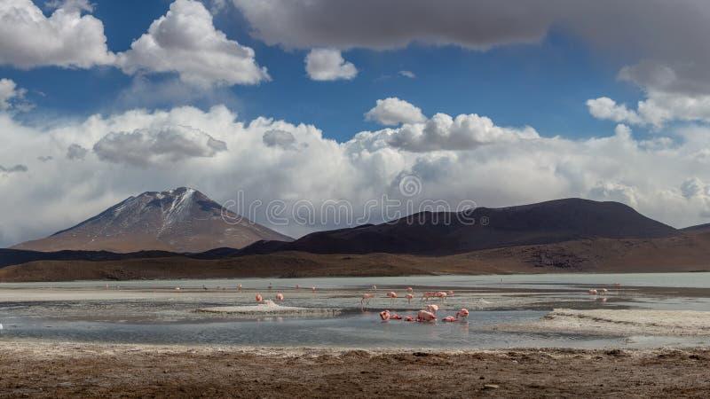Θυελλώδης καιρός πέρα από καλυμμένα τα χιόνι βουνά στη Βολιβία στοκ εικόνες με δικαίωμα ελεύθερης χρήσης