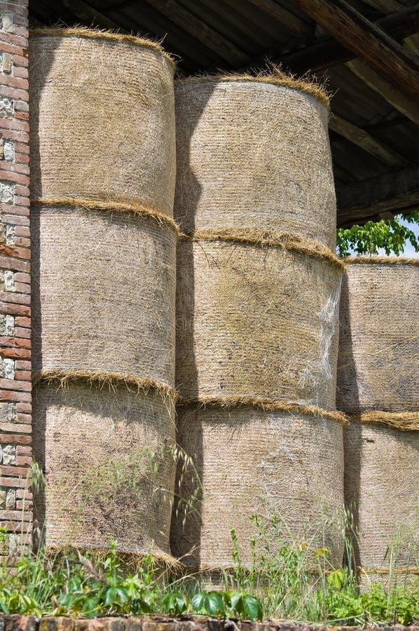 Download θυμωνιά χόρτου δεμάτων στοκ εικόνες. εικόνα από ιταλία - 22792526